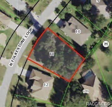 2986 N Folkestone Loop, Hernando, FL 34442 (MLS #796002) :: Plantation Realty Inc.