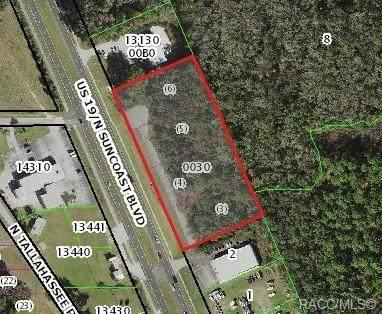 0 Us Hwy 19, Crystal River, FL 34428 (MLS #796409) :: Plantation Realty Inc.