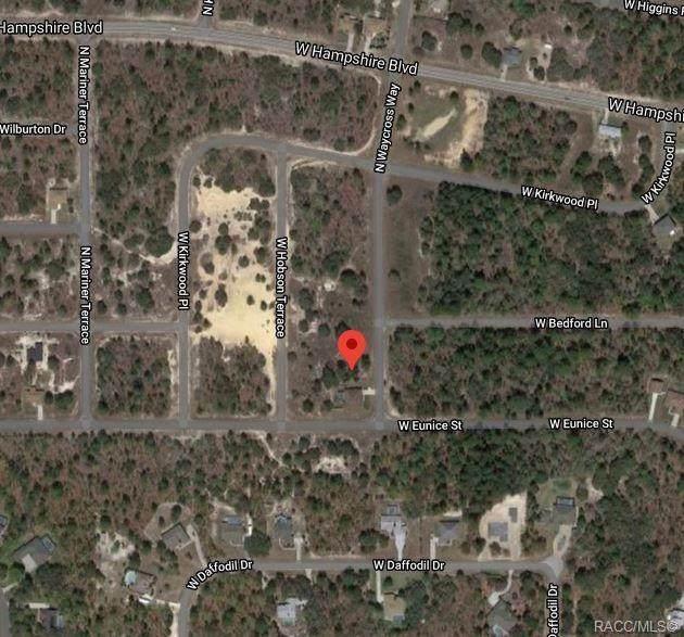 6218 N Waycross Way, Citrus Springs, FL 34433 (MLS #796655) :: Plantation Realty Inc.