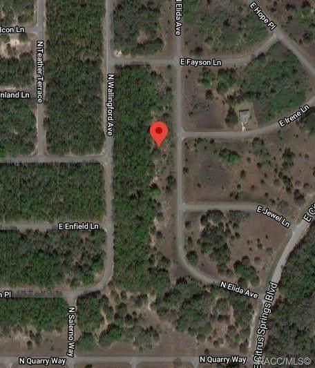 8406 N Elida Avenue, Citrus Springs, FL 34434 (MLS #796838) :: Plantation Realty Inc.