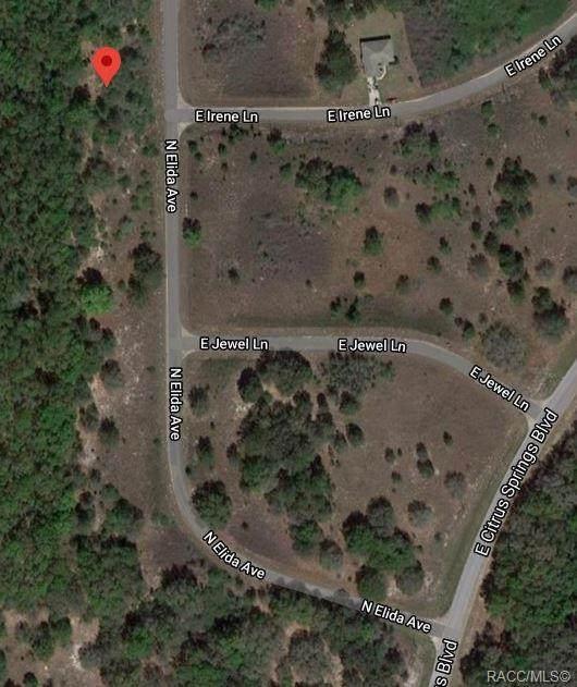8428 N Elida Avenue, Citrus Springs, FL 34434 (MLS #796839) :: Plantation Realty Inc.