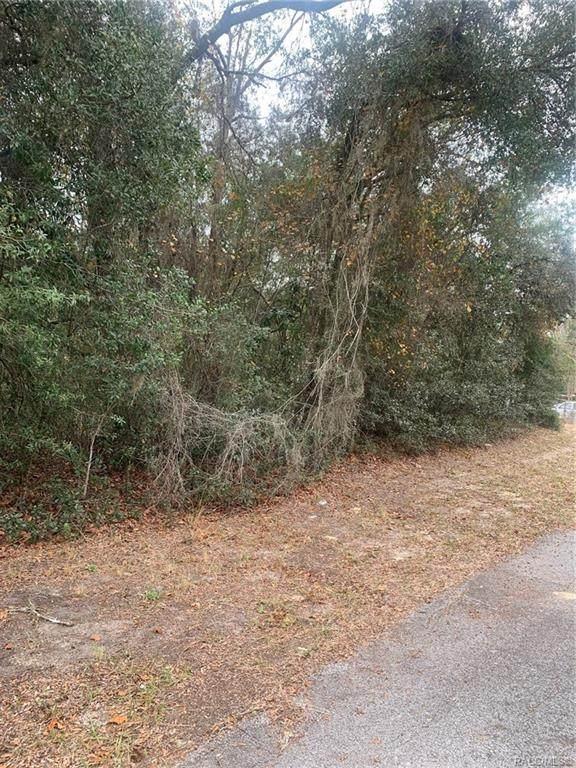 6467 N Iris Drive, Hernando, FL 34442 (MLS #797321) :: Plantation Realty Inc.