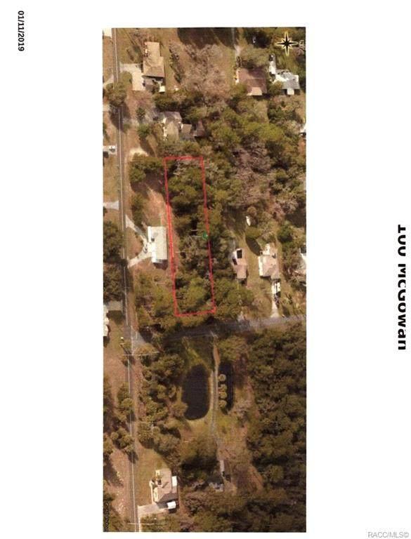 100 N Mcgowan Avenue, Crystal River, FL 34429 (MLS #797364) :: Plantation Realty Inc.