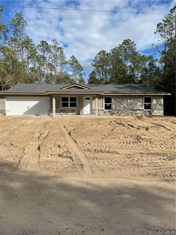 8503 N Teather Terrace, Citrus Springs, FL 34434 (MLS #797986) :: Plantation Realty Inc.