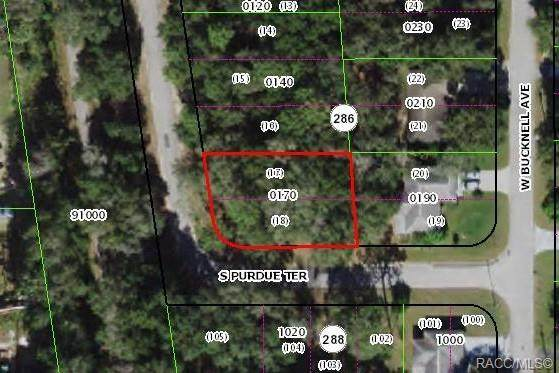 1116 S Purdue Street, Inverness, FL 34450 (MLS #798021) :: Plantation Realty Inc.