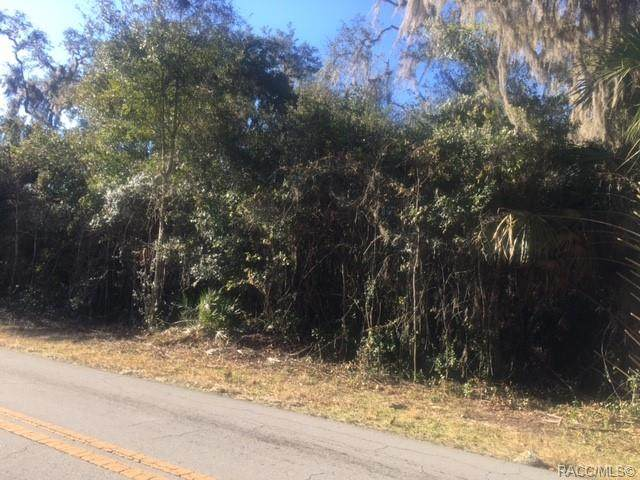 4319 E Shorewood (Lot 34) Drive, Hernando, FL 34442 (MLS #798048) :: Plantation Realty Inc.