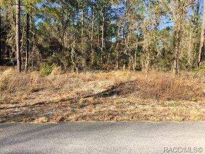 LOT 19 NW Mallard Avenue, Dunnellon, FL 34431 (MLS #798055) :: Plantation Realty Inc.