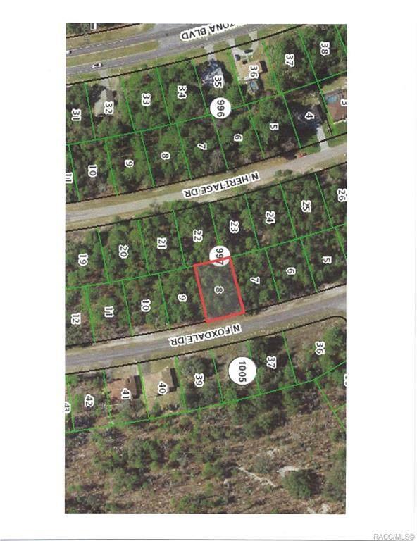 7094 N Foxdale Drive, Citrus Springs, FL 34434 (MLS #798057) :: Plantation Realty Inc.
