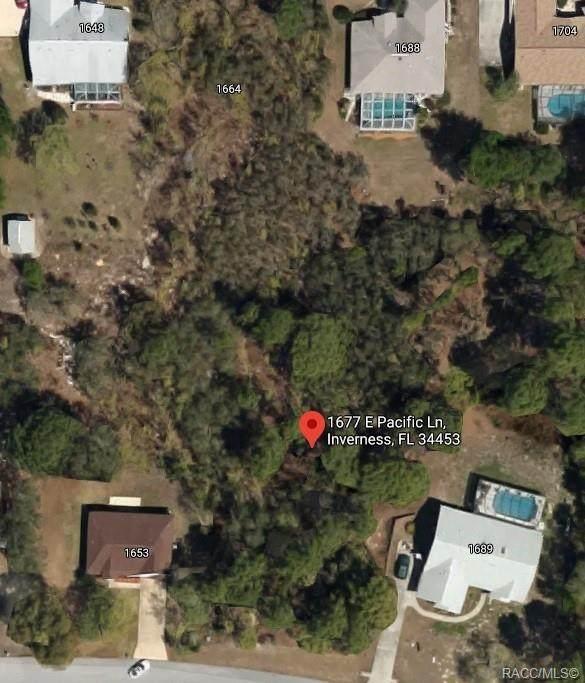 1677 E Pacific Lane, Inverness, FL 34453 (MLS #798201) :: Plantation Realty Inc.