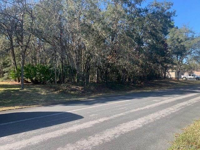 980 N Short Line Way, Inverness, FL 34453 (MLS #798214) :: Plantation Realty Inc.