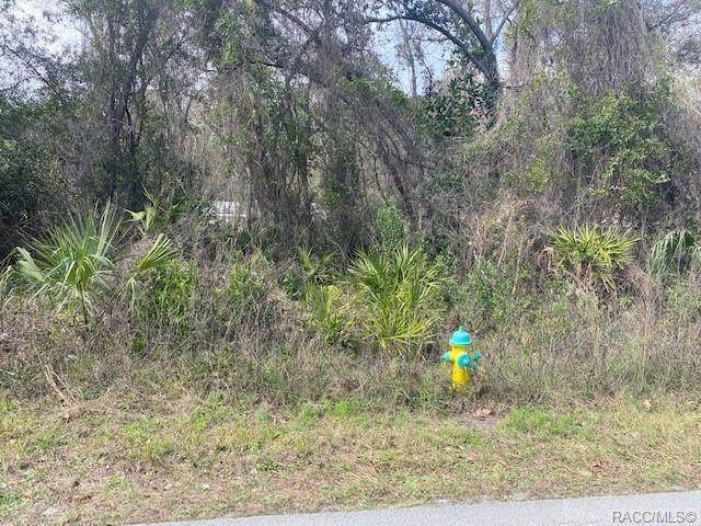 10550 S Riviera Drive, Homosassa, FL 34448 (MLS #798763) :: Plantation Realty Inc.