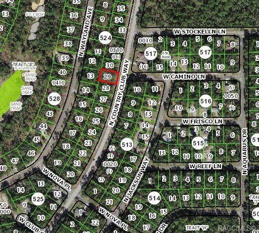 9636 N Country Club Way, Citrus Springs, FL 34434 (MLS #799012) :: Plantation Realty Inc.