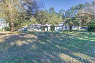 2103 W Arbutus Drive, Citrus Springs, FL 34434 (MLS #799035) :: Plantation Realty Inc.
