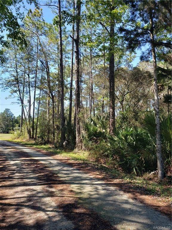 7971 W Hawthorne Place, Homosassa, FL 34448 (MLS #799131) :: Plantation Realty Inc.