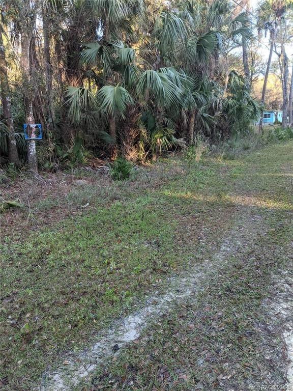 0 Shearer Street, Inglis, FL 34449 (MLS #799442) :: Dalton Wade Real Estate Group