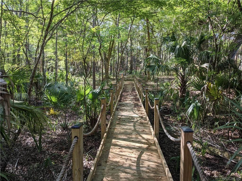 13651 Foss Groves Path - Photo 1