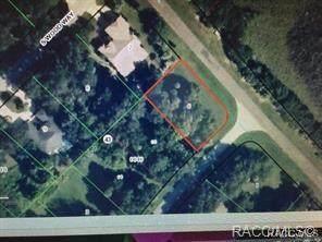 4816 S Trail Way, Homosassa, FL 34448 (MLS #799691) :: Plantation Realty Inc.