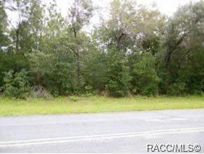 9589 N Country Club Way, Citrus Springs, FL 34434 (MLS #800206) :: Plantation Realty Inc.