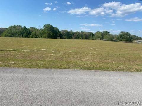 681 E Connecticut Lane, Hernando, FL 34442 (MLS #800252) :: Plantation Realty Inc.
