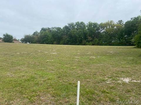 675 E Dunbar Lane, Hernando, FL 34442 (MLS #800289) :: Plantation Realty Inc.