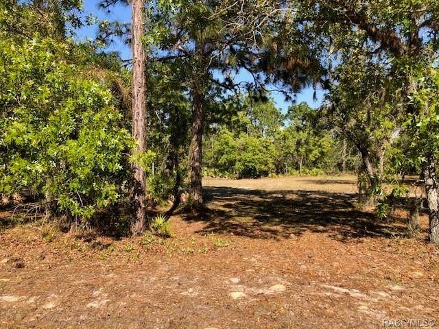 3467 N Spyglass Village Path, Lecanto, FL 34461 (MLS #800296) :: Plantation Realty Inc.