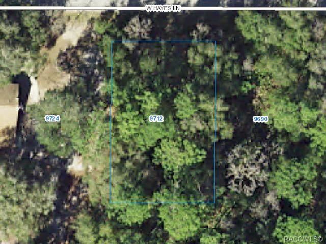 9712 W Hayes Lane, Crystal River, FL 34428 (MLS #800347) :: Plantation Realty Inc.