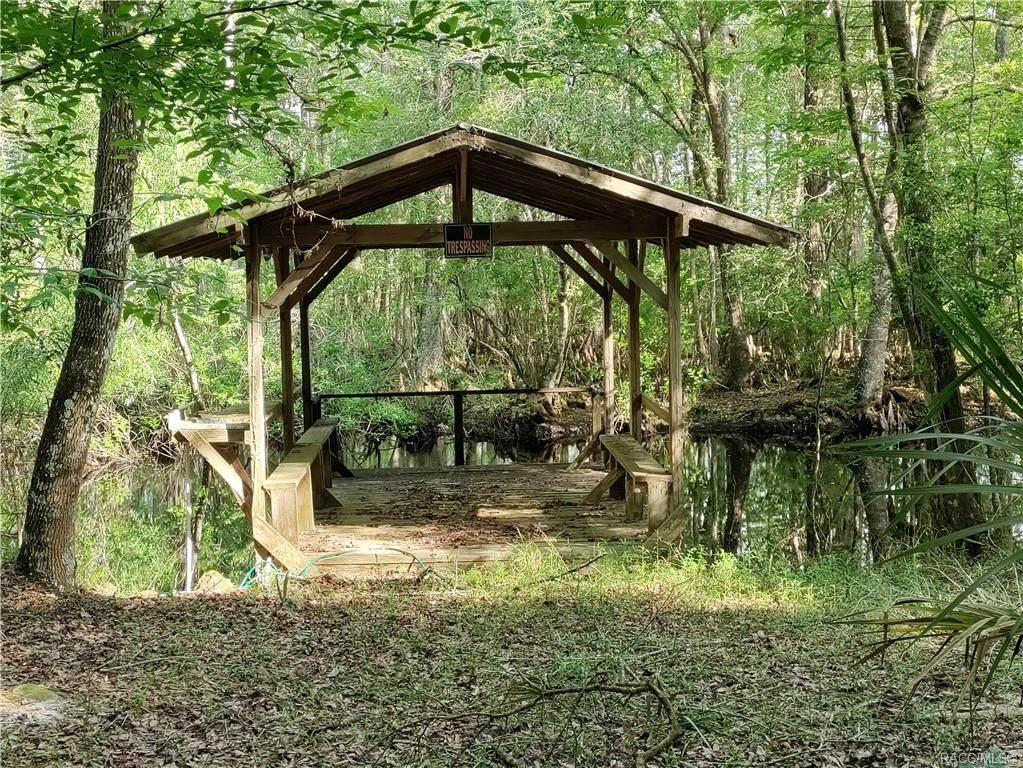 12811 Big Buck Trail - Photo 1