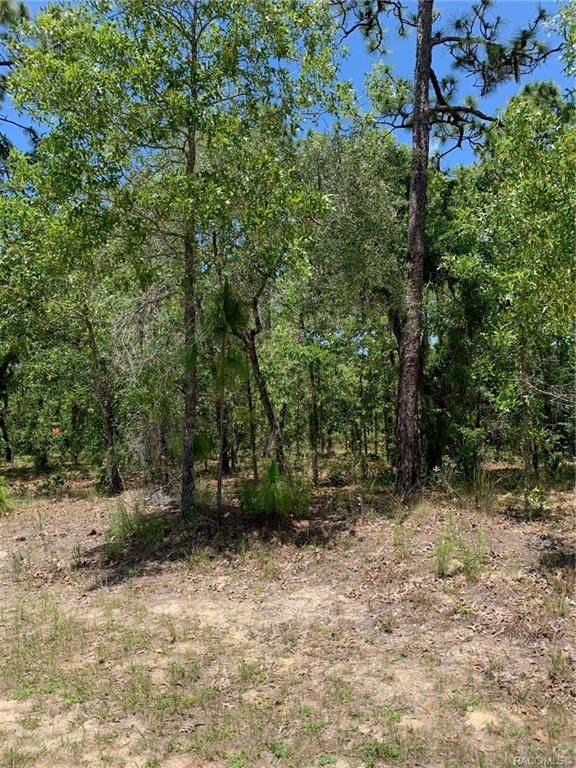 2843 W Axelwood Drive, Beverly Hills, FL 34465 (MLS #801110) :: Plantation Realty Inc.