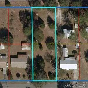 00000 SE 195th Lane, Dunnellon, FL 34431 (MLS #801364) :: Plantation Realty Inc.