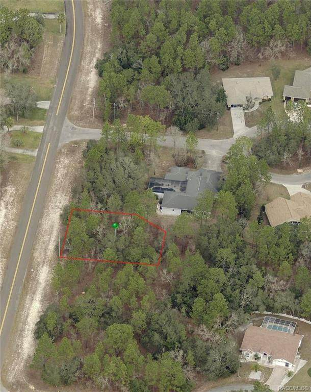 104 Corkwood Boulevard, Homosassa, FL 34446 (MLS #801370) :: Plantation Realty Inc.