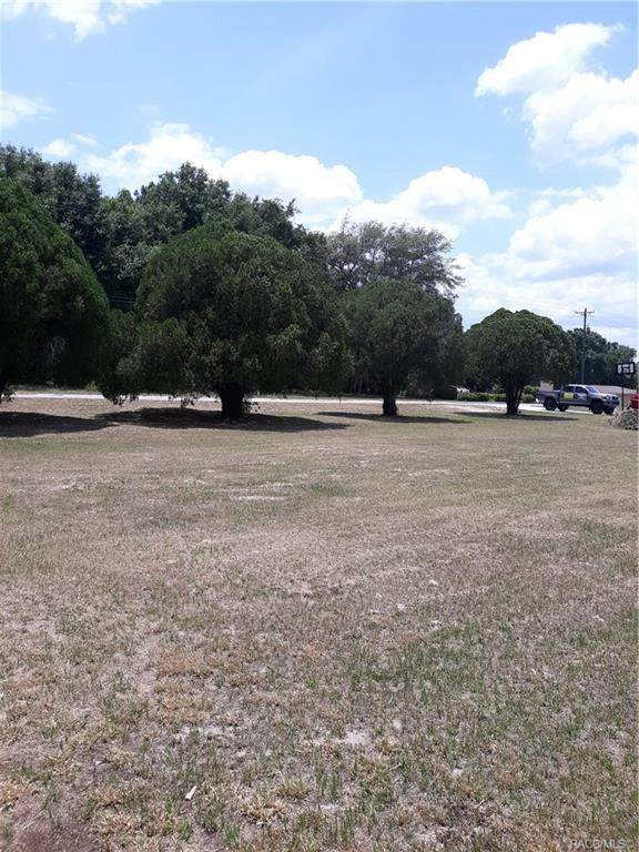 1706 Beside Old Floral City Rd - Photo 1