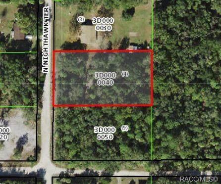 11303 N Nighthawk Terrace, Inglis, FL 34449 (MLS #802109) :: Plantation Realty Inc.