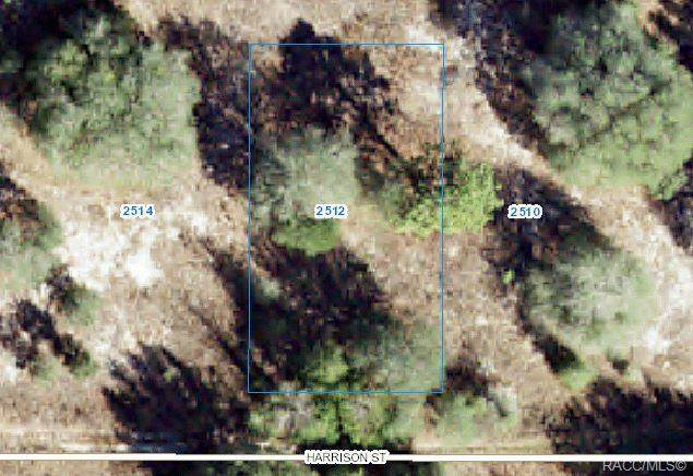 2512 Harrison Street, Inverness, FL 34453 (MLS #802279) :: Plantation Realty Inc.