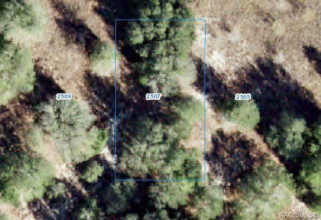 2507 Harrison Street, Inverness, FL 34453 (MLS #802283) :: Plantation Realty Inc.