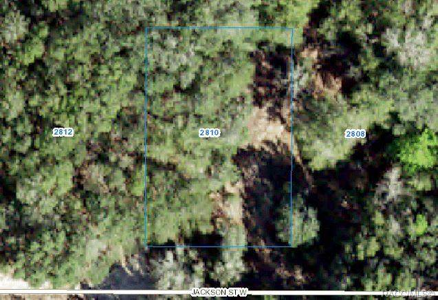 2810 Jackson Street W, Inverness, FL 34453 (MLS #802300) :: Plantation Realty Inc.