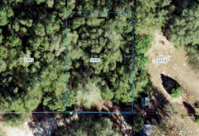 2803 Jackson Street W, Inverness, FL 34453 (MLS #802304) :: Plantation Realty Inc.
