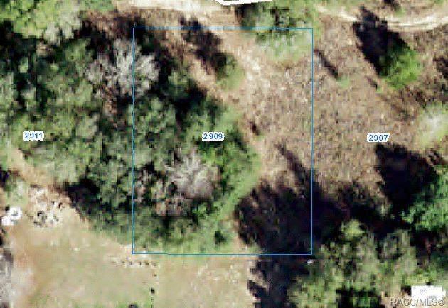 2909 Jackson Street W, Inverness, FL 34453 (MLS #802306) :: Plantation Realty Inc.