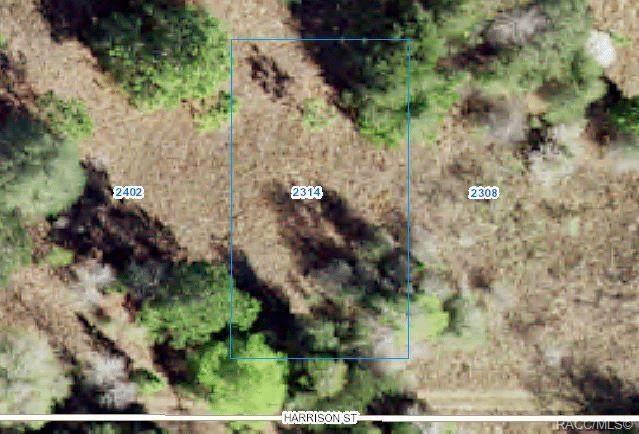 2314 Jackson Street, Inverness, FL 34453 (MLS #802308) :: Plantation Realty Inc.