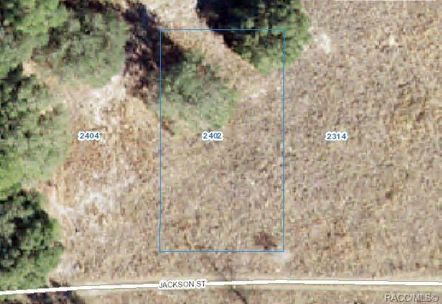 2402 Jackson Street, Inverness, FL 34453 (MLS #802309) :: Plantation Realty Inc.