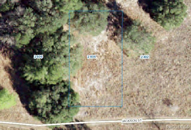 2404 Jackson Street, Inverness, FL 34453 (MLS #802310) :: Plantation Realty Inc.