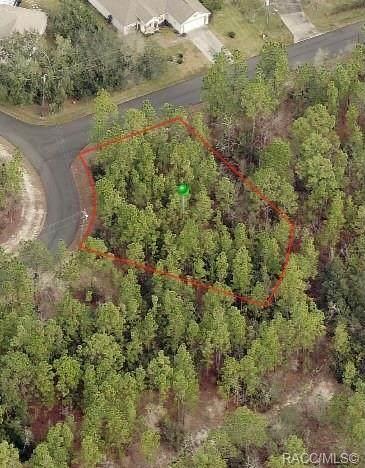 39 Milbark Drive, Homosassa, FL 34446 (MLS #802347) :: Plantation Realty Inc.