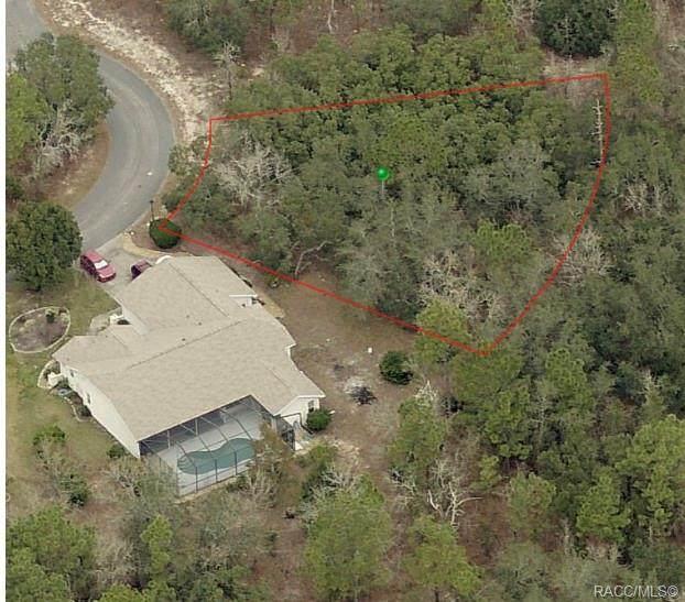 11 Honeysuckle Court S, Homosassa, FL 34446 (MLS #802349) :: Plantation Realty Inc.