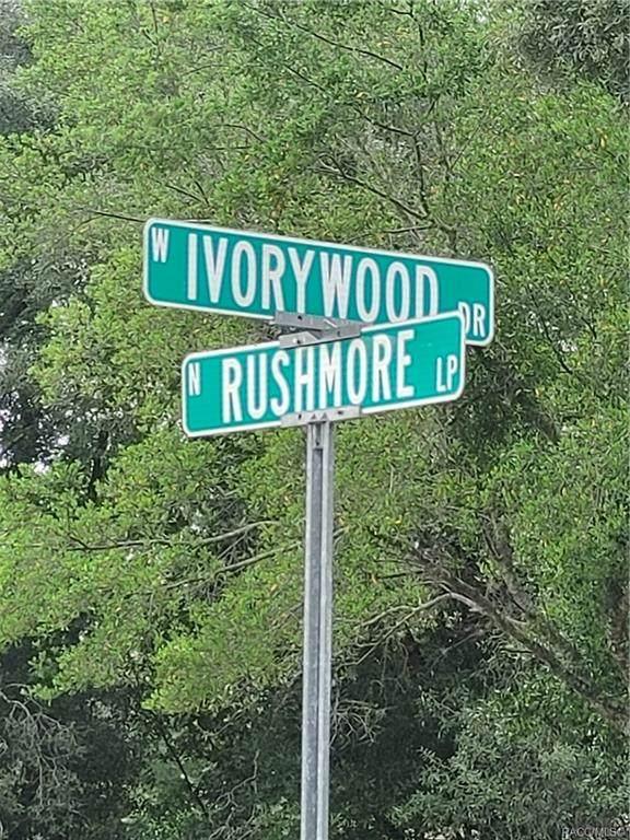 1615 Ivorywood Drive - Photo 1