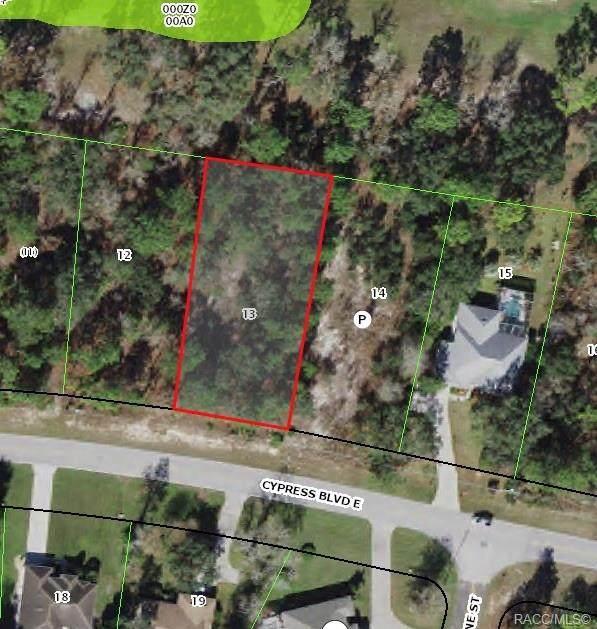38 Cypress Boulevard E, Homosassa, FL 34446 (MLS #802435) :: Plantation Realty Inc.