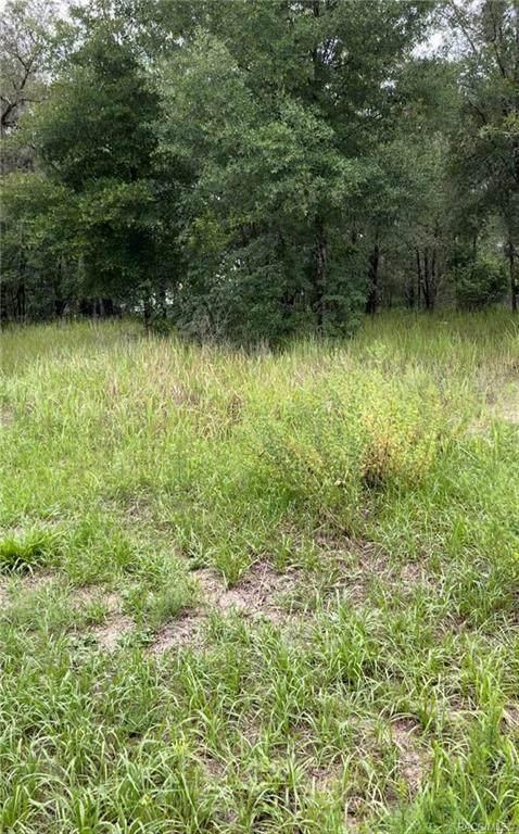 105 N Fitzpatrick Avenue, Inverness, FL 34453 (MLS #802694) :: Plantation Realty Inc.