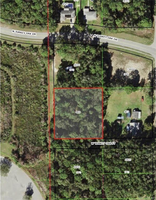3670 N Turkey Oak Drive, Crystal River, FL 34428 (MLS #802994) :: Plantation Realty Inc.