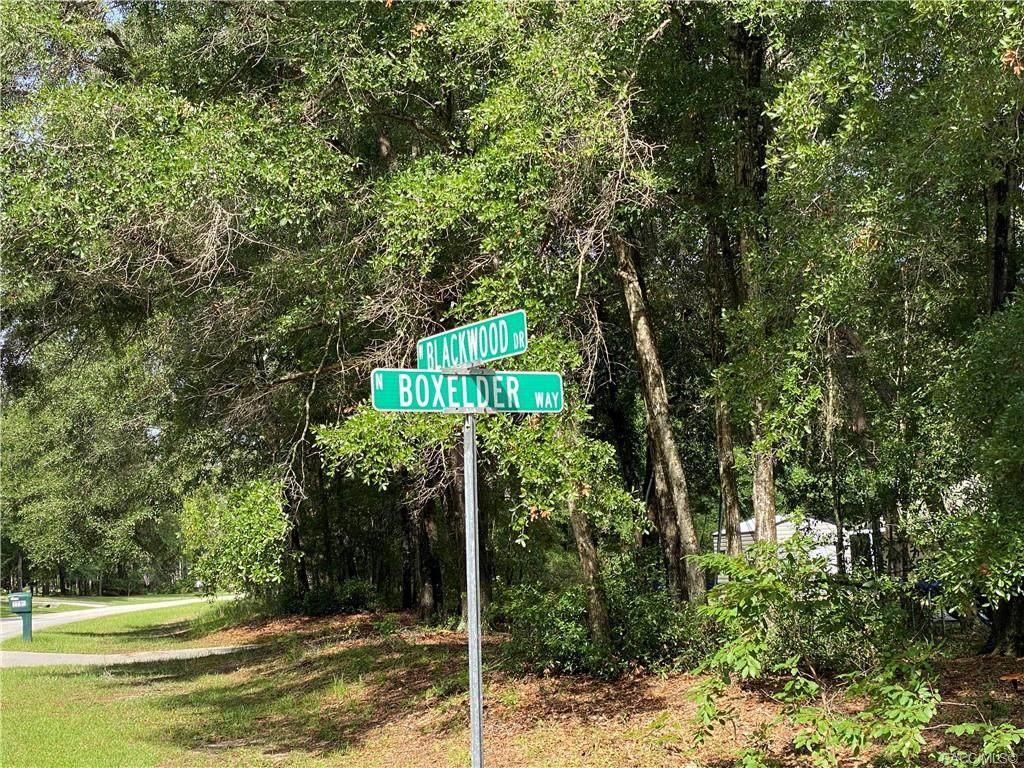 2702 Blackwood Drive - Photo 1
