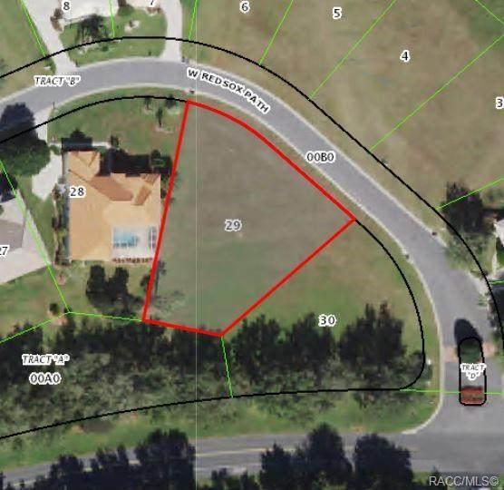 202 W Redsox Path, Hernando, FL 34442 (MLS #803093) :: Plantation Realty Inc.