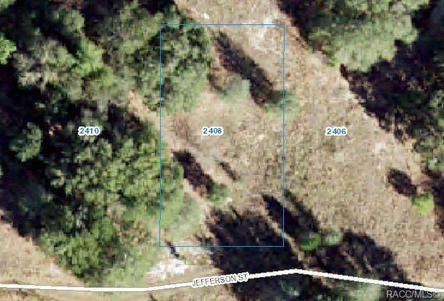 2408 Jefferson Street, Inverness, FL 34453 (MLS #803690) :: Plantation Realty Inc.