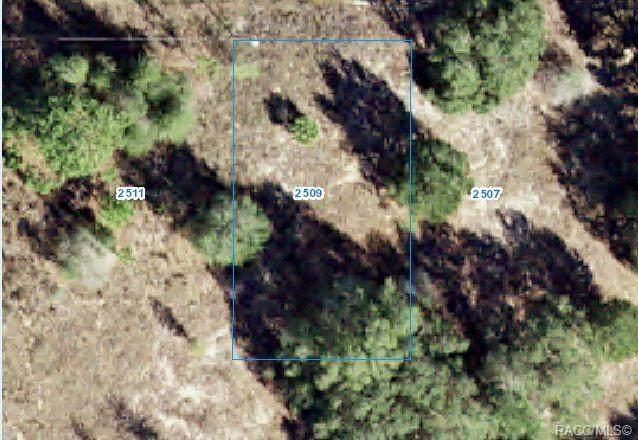 2509 Jefferson Street, Inverness, FL 34453 (MLS #803693) :: Plantation Realty Inc.